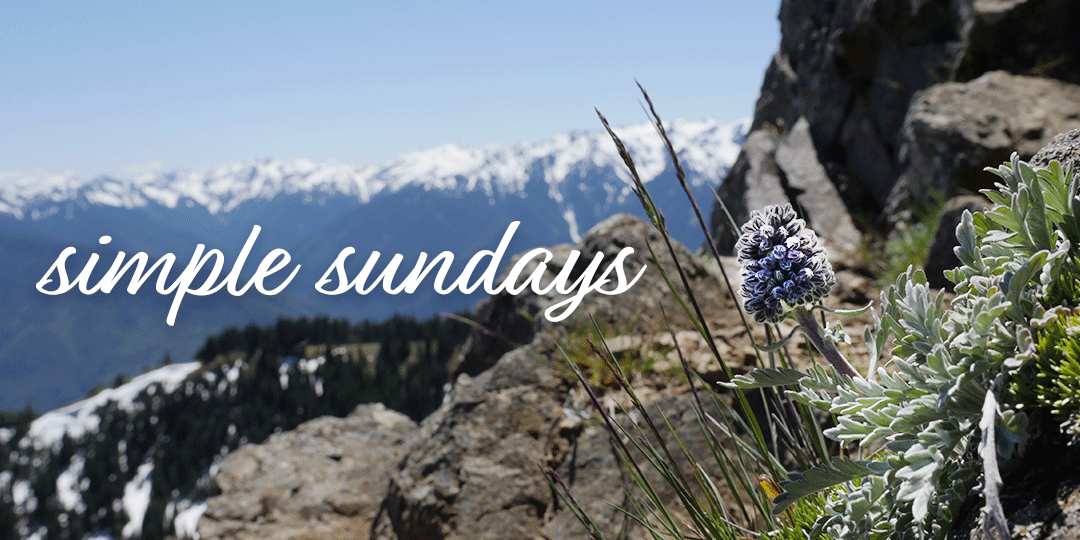 Simple Sundays | Olympic National Park