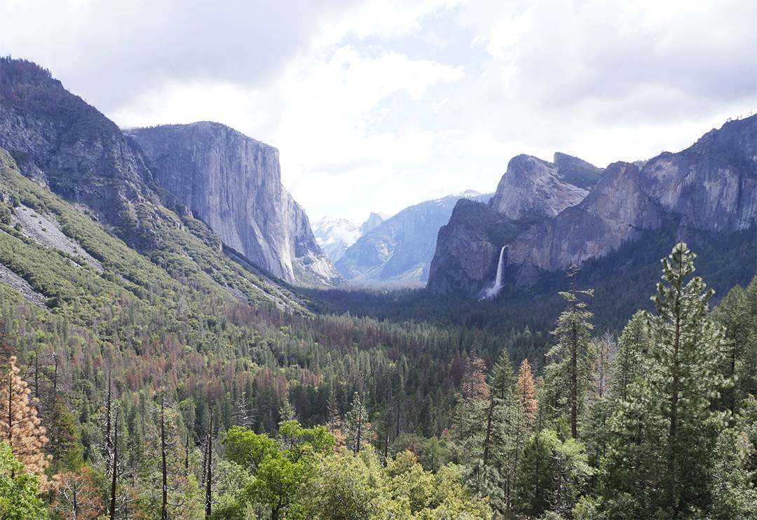yosemite-valley-tunnel-view