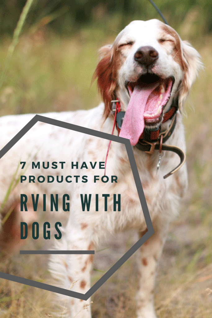 7 must have products for RVing with dogs