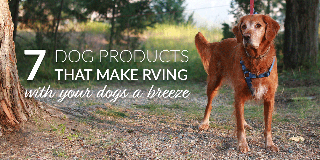7 Dog Products That Make RVing with Dogs a Breeze