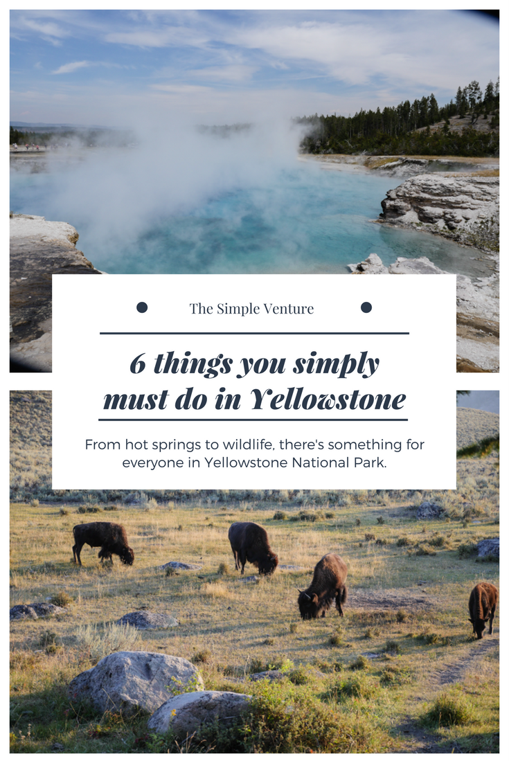 6 Things You Simply Must-do in Yellowstone National Park